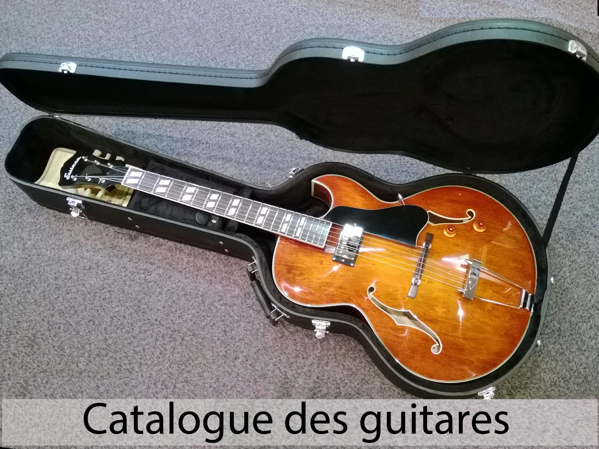 Acceuil guitares