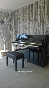 Catalogue des pianos dtroits