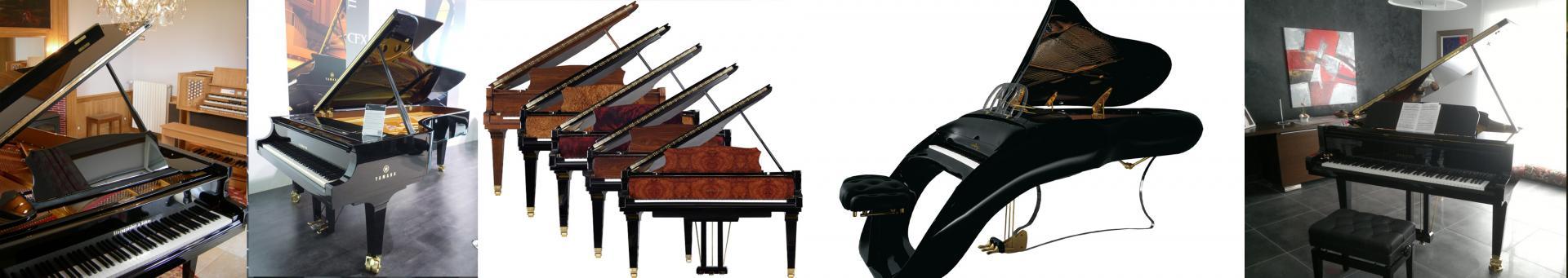 Exemples d'offres sur une sélection de pianos à queue