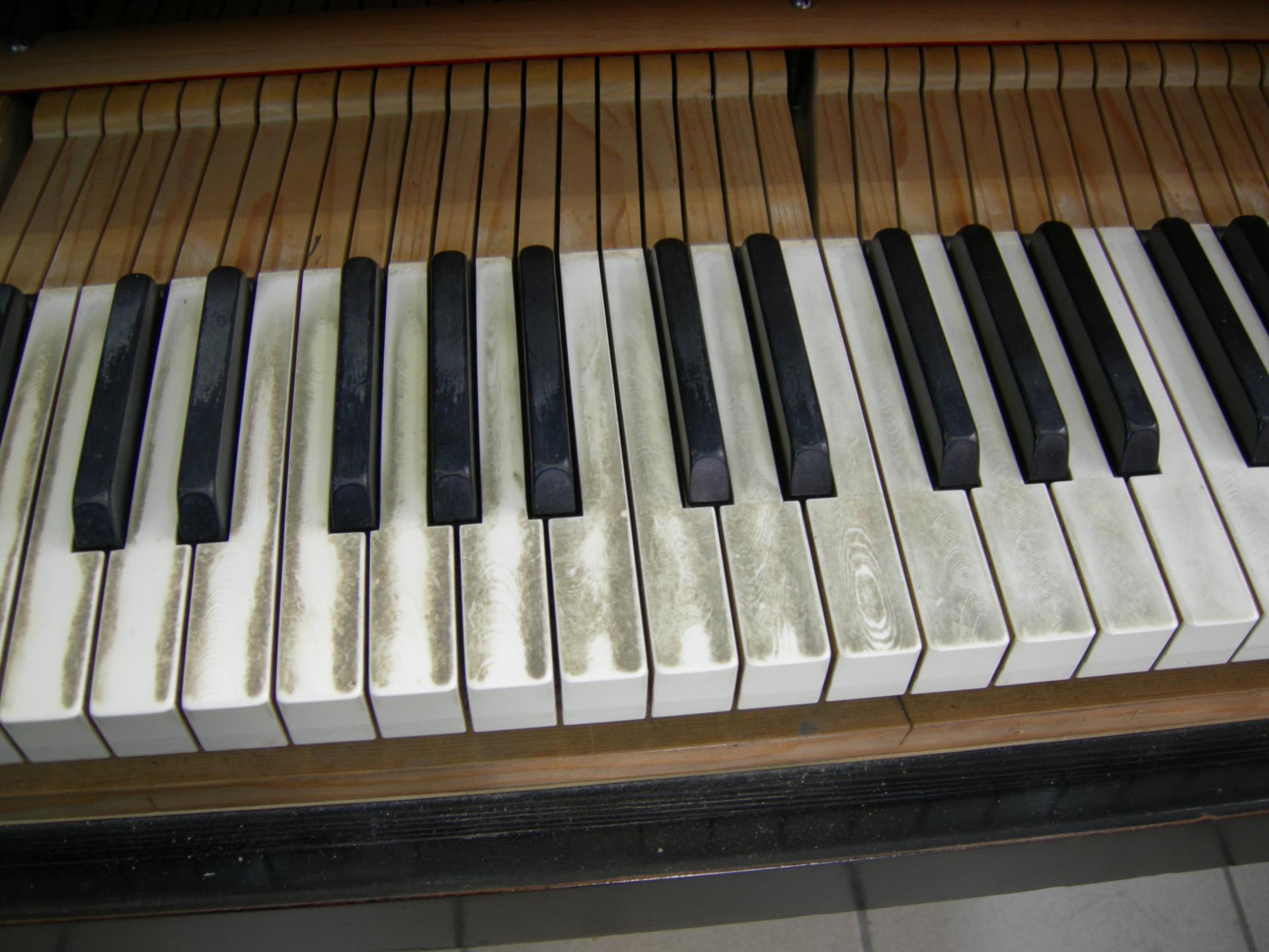 Bosendorfer clavier av