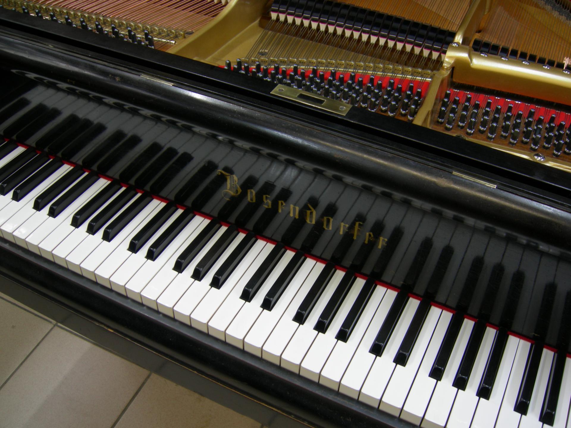 Bosendorfer clavier ds piano