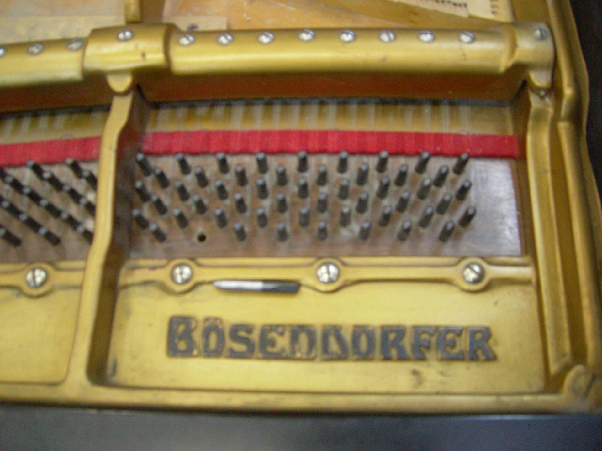 Bosendorfer logo avant 1