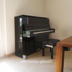 SCHIMMEL C116 Moderne