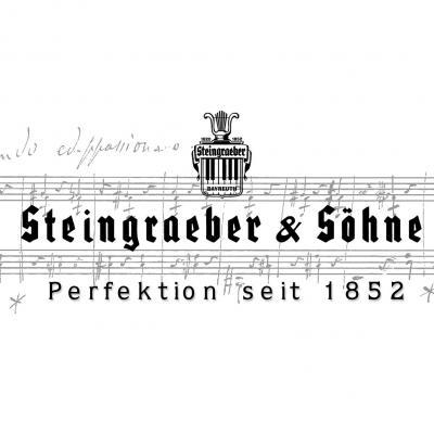 Carre steingraeber 2