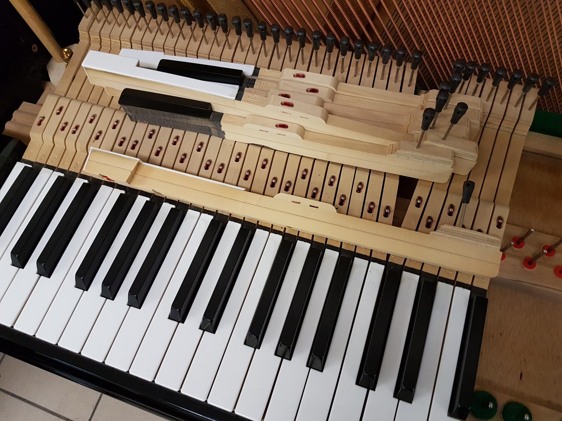 Cadre de clavier renforcé et magnifique sillet dans l'aigue