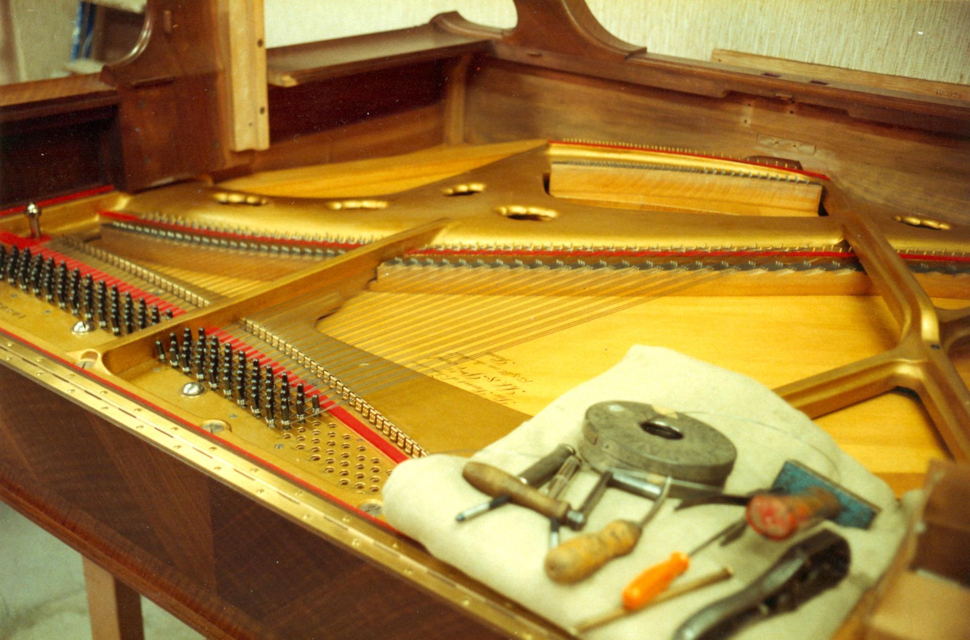 Erard 1924 cordes