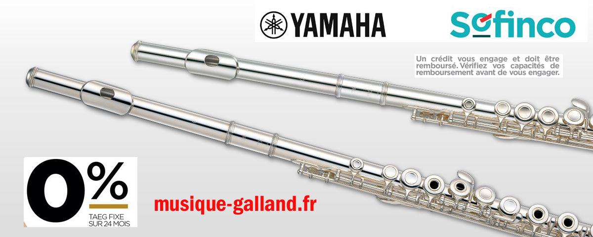 Flute traversiere 24 gratuit