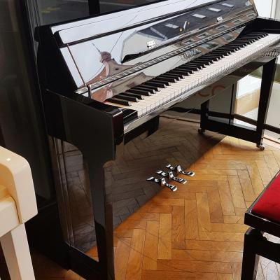 LOCATION d'un piano neuf 116cm FRIDOLIN-Schimmel