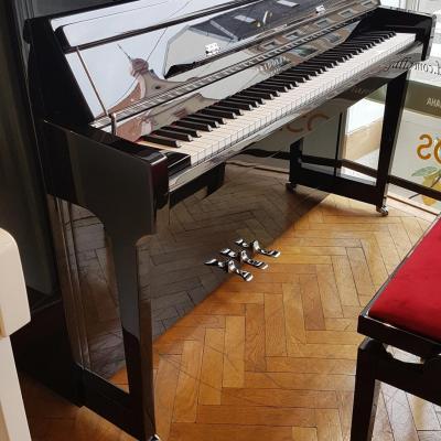 Offre spéciale sur le piano neuf Fridolin Schimmel F116 noir  en 36 x125 €