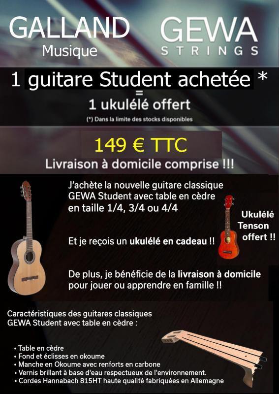 Gewa guitare 1