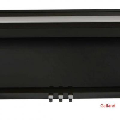 DEXIBELL VIVO-H10-BK  noir mat avec toucher hybride bois/plastique