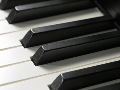 Ivory ebony touch keys