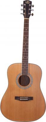 Guitare Folk  SD16 JM.FOREST