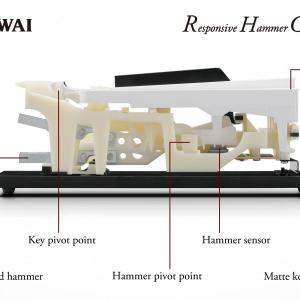 Kawai rhc