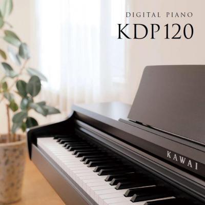 KAWAI numérique KDP-120-B noir mat (Monté)