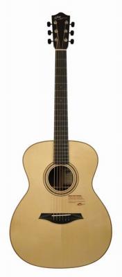 Guitare MAYSON  M10S