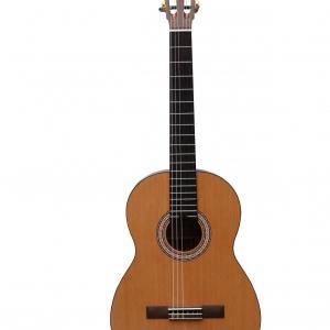 Prodipe guitars primera face