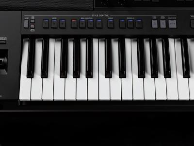 Clavier arrangeur YAMAHA PSR-SX900