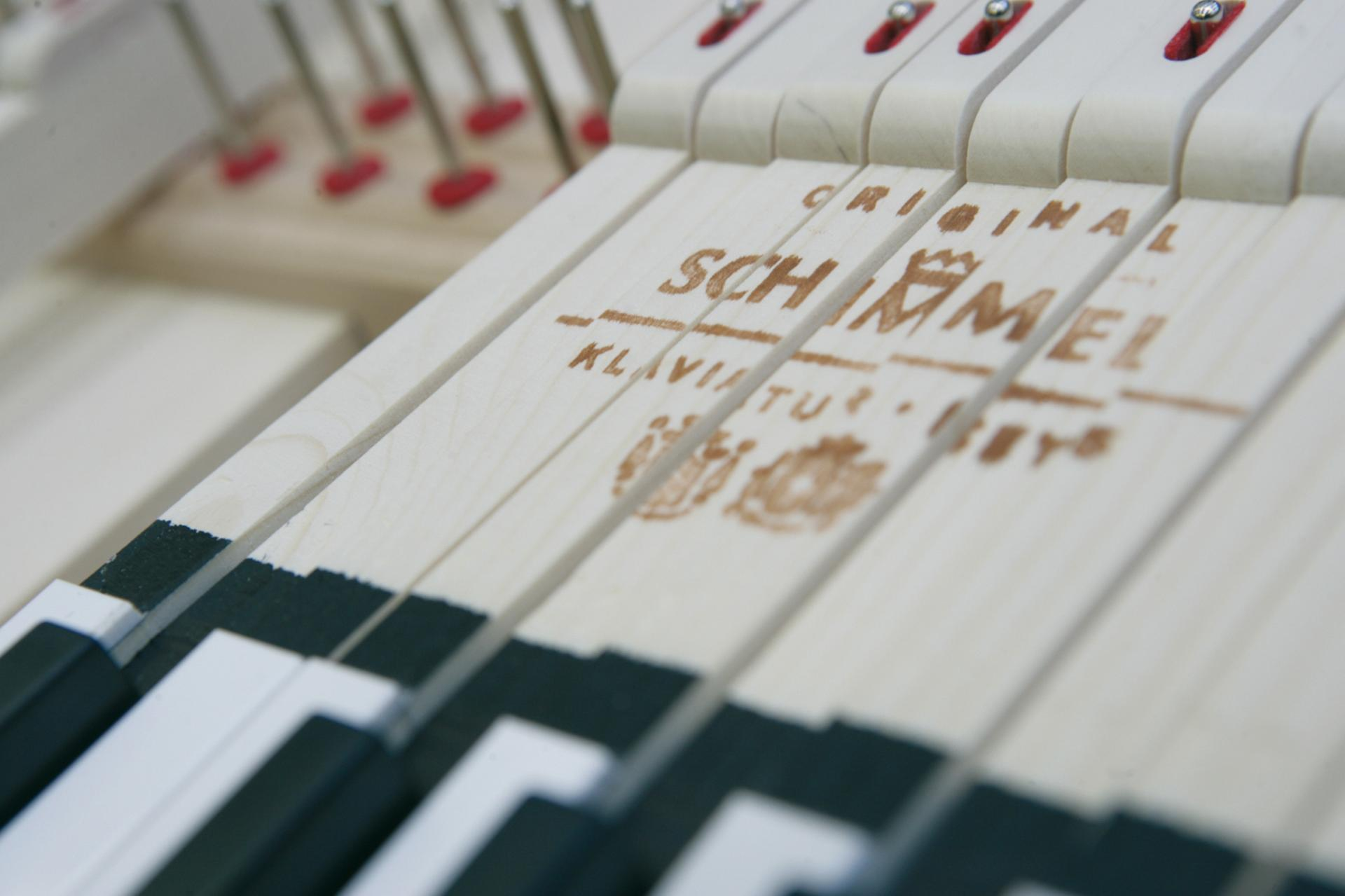 Schim clavier