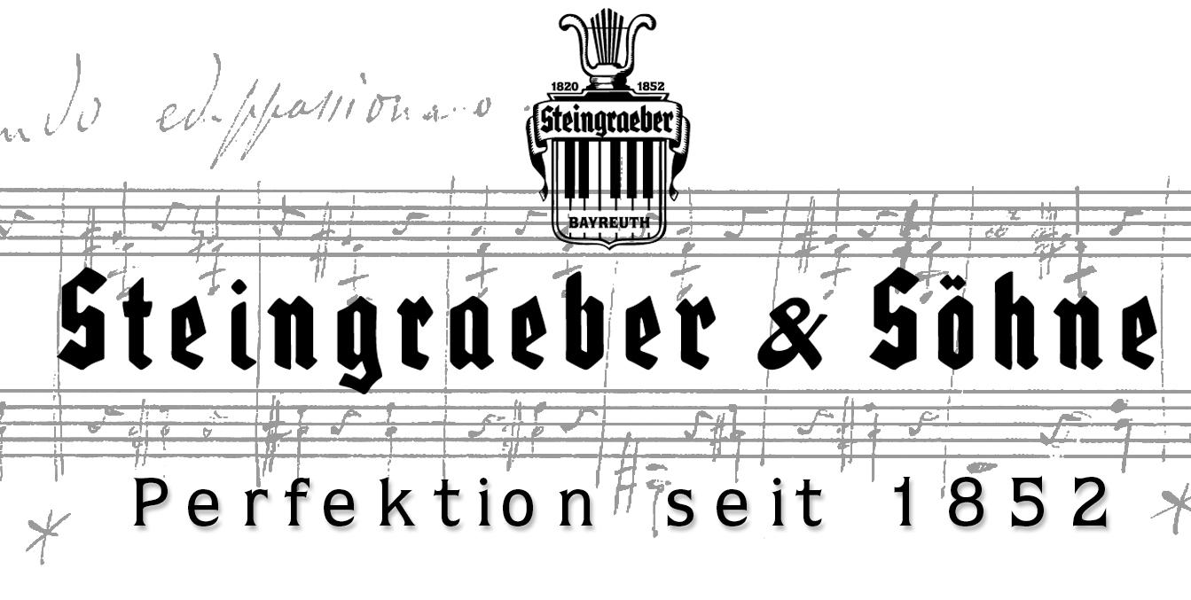 Steingraeber 2