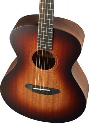 Breedlove Fire Light E