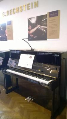 BECHSTEIN IMPOSANT-124 VARIO Piano droit d'excellence