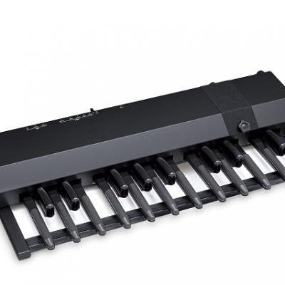 Pédalier portable HAMMOND modèle XPK-200G - 20 notes