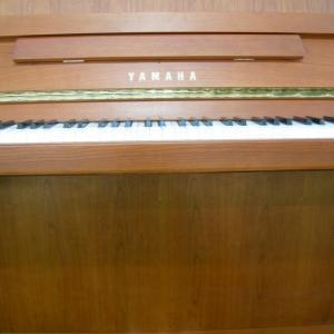 Yamaha b1 merisier 2